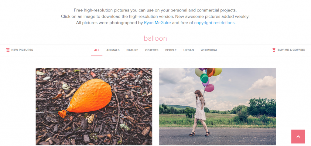 gratisography free stock photo