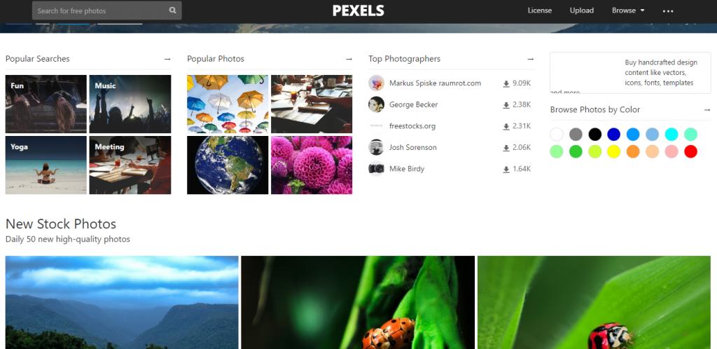 pexels free stock photo